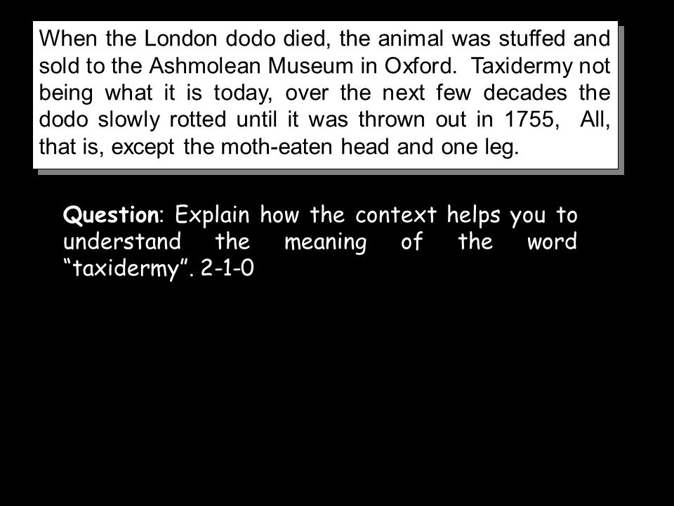 When the London dodo died, the animal was stuffed and sold to the Ashmolean Museum in Oxford. Taxidermy not being what it is today, over the next few decades the dodo slowly rotted until it was thrown out in 1755, All, that is, except the moth-eaten head and one leg.
