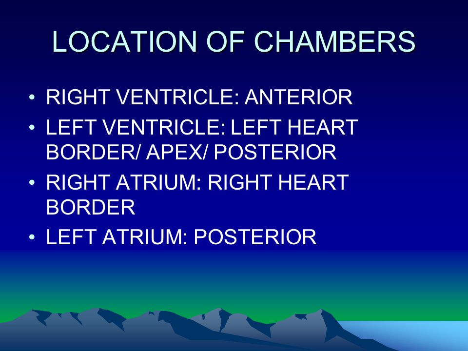 LOCATION OF CHAMBERS RIGHT VENTRICLE: ANTERIOR