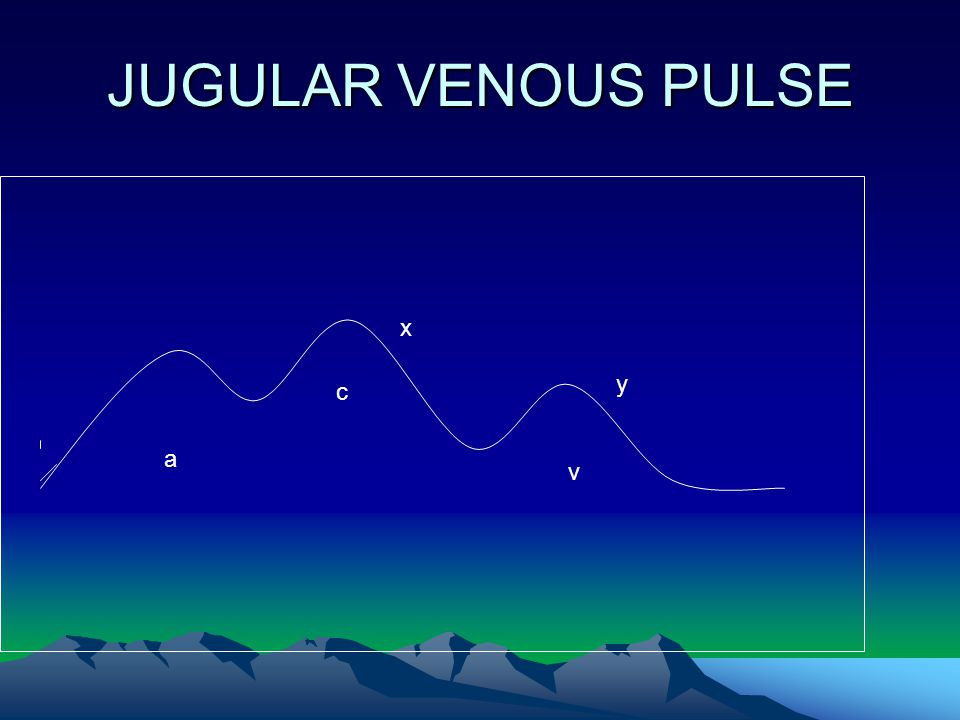 JUGULAR VENOUS PULSE x y c a v