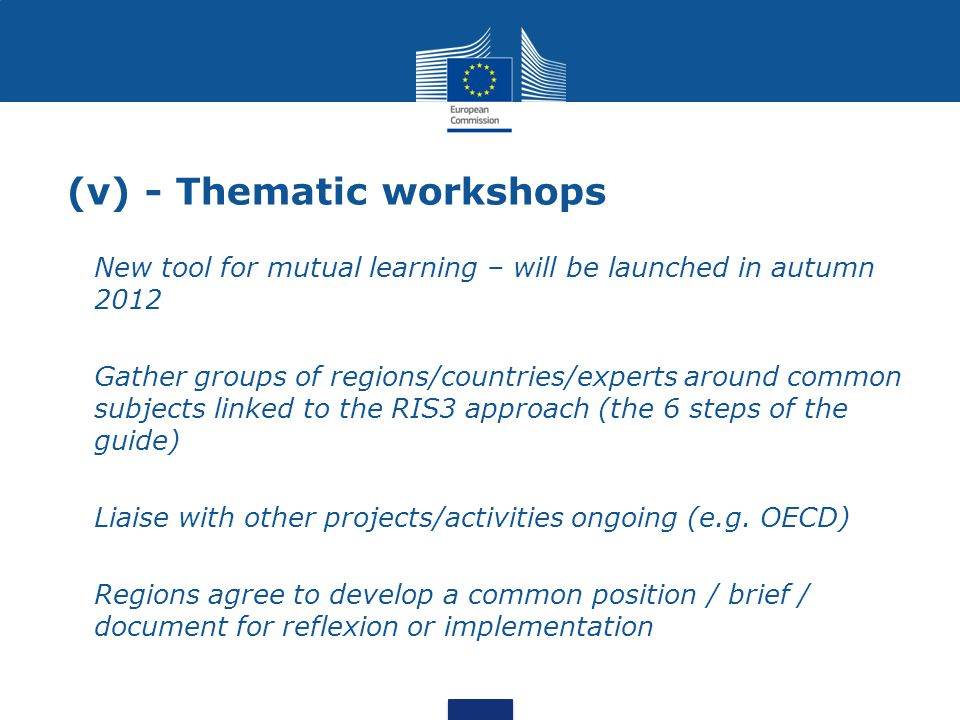 (v) - Thematic workshops