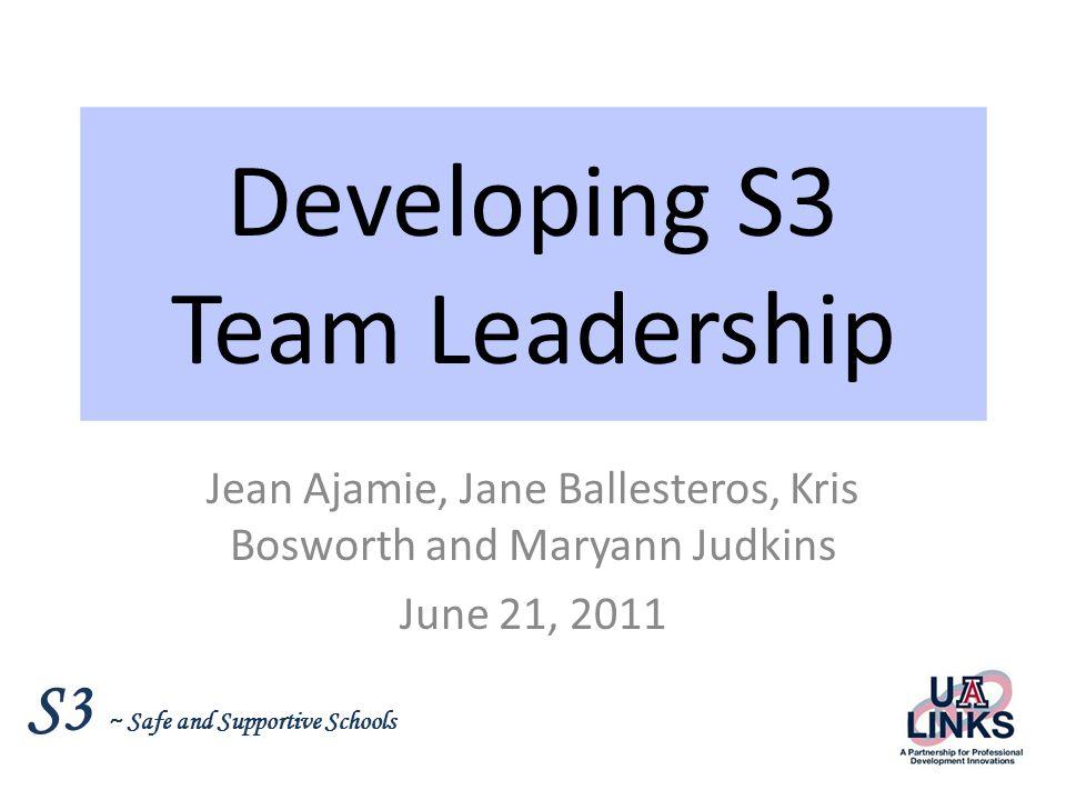 Developing S3 Team Leadership