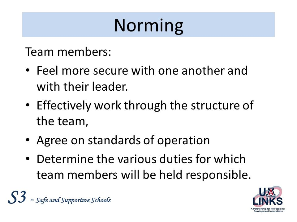 Norming Team members: Feel more secure with one another and with their leader. Effectively work through the structure of the team,