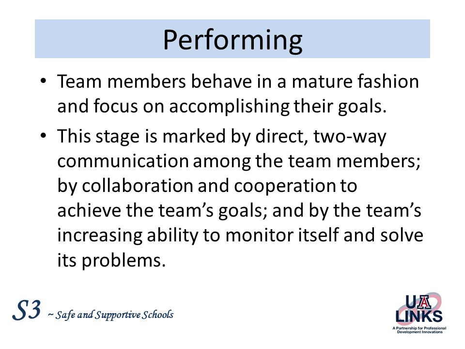 Performing Team members behave in a mature fashion and focus on accomplishing their goals.