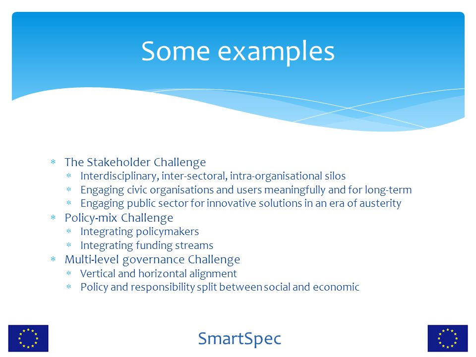 Some examples The Stakeholder Challenge Policy-mix Challenge
