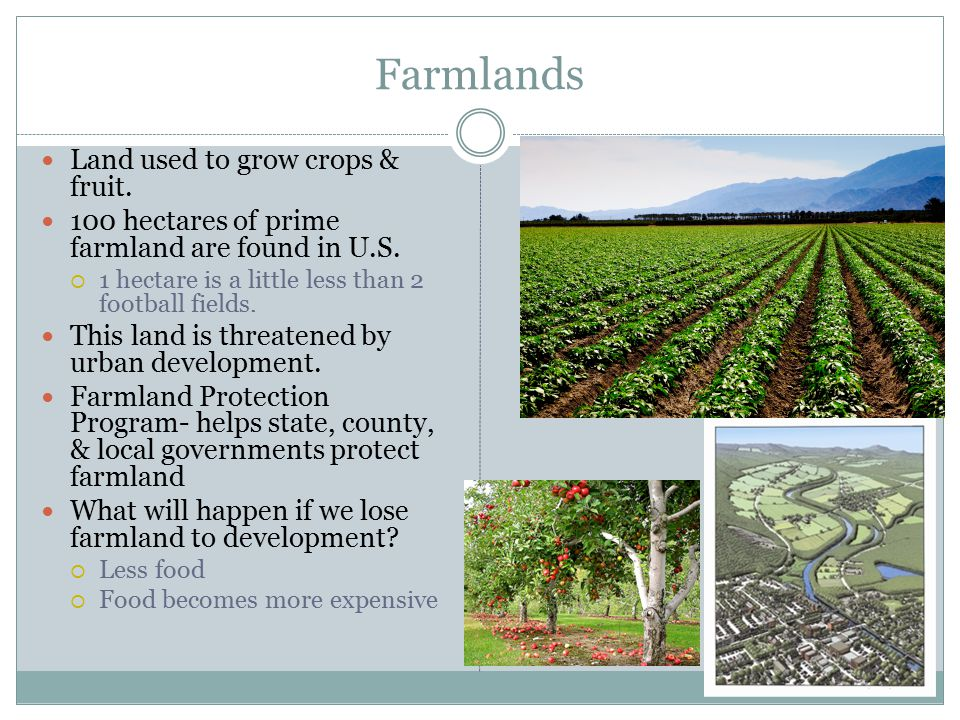 Farmlands Land used to grow crops & fruit.
