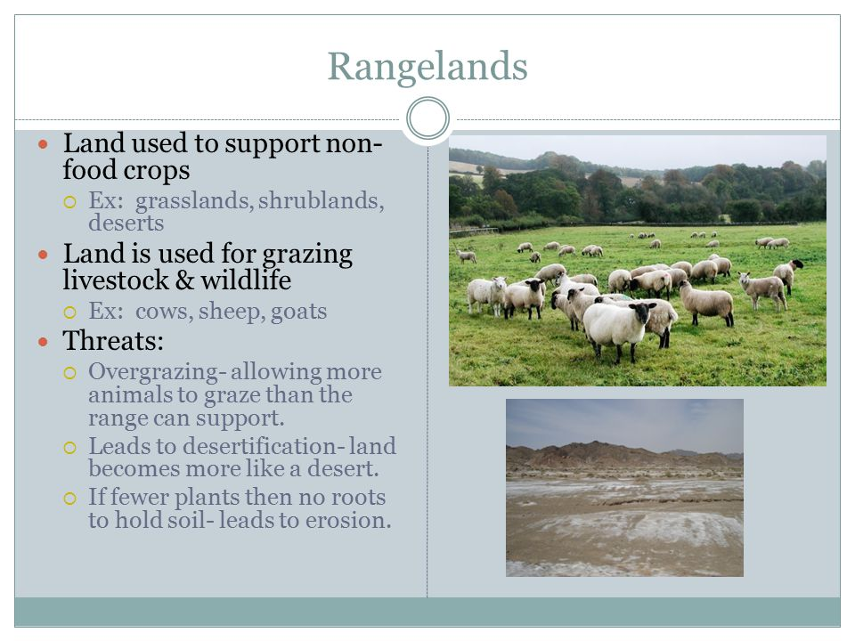 Rangelands Land used to support non-food crops
