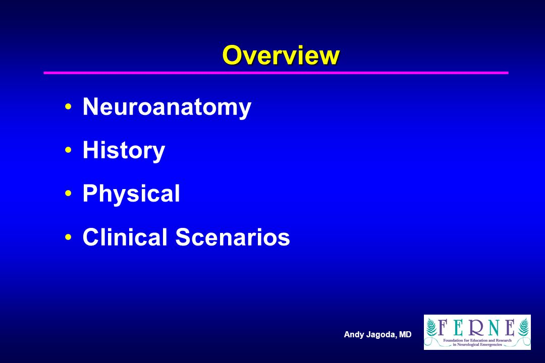 Overview Neuroanatomy History Physical Clinical Scenarios 3 3 3 3