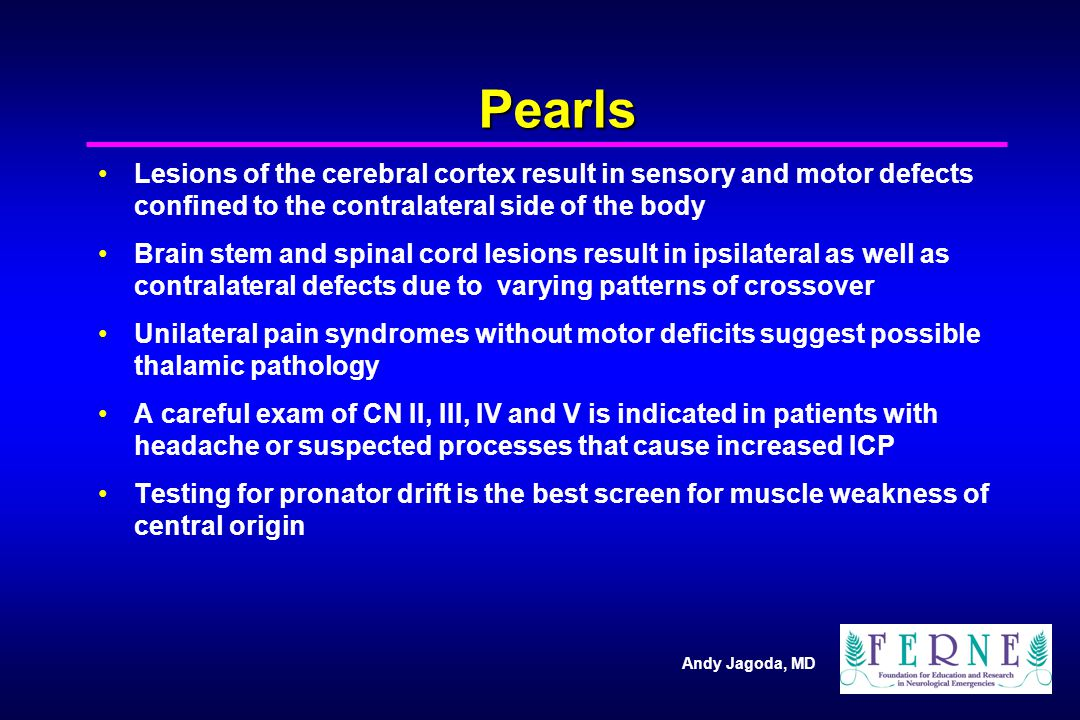 Pearls Lesions of the cerebral cortex result in sensory and motor defects confined to the contralateral side of the body.