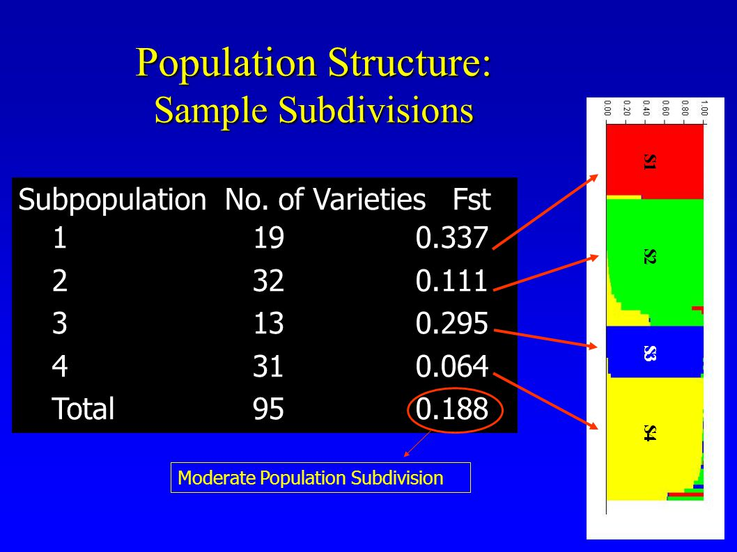 Population Structure: Sample Subdivisions