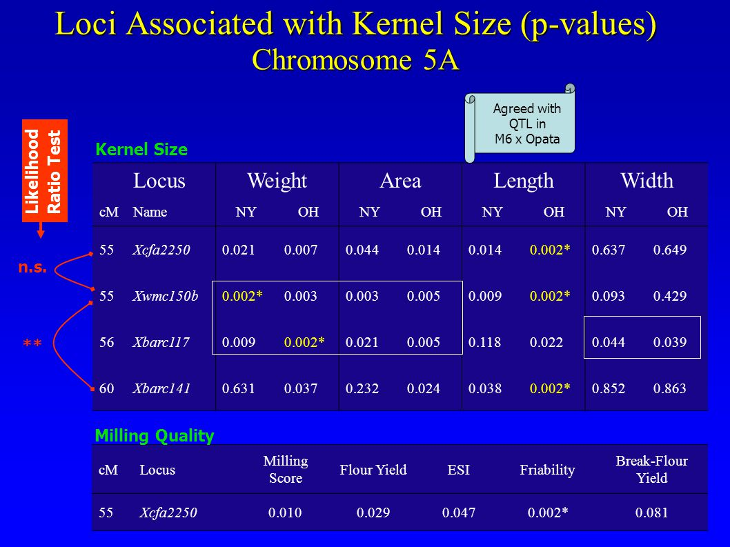 Loci Associated with Kernel Size (p-values) Chromosome 5A