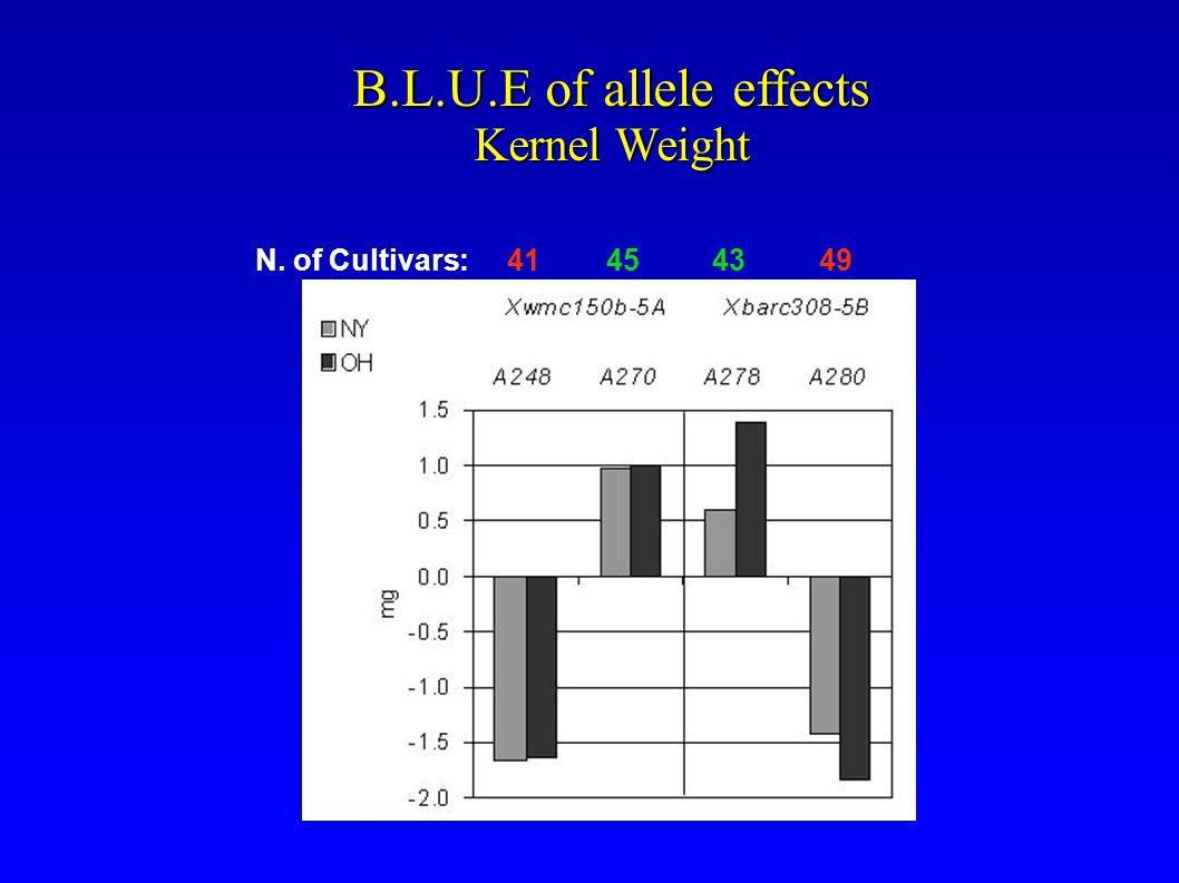 B.L.U.E of allele effects Kernel Weight N. of Cultivars: 41 45 43 49