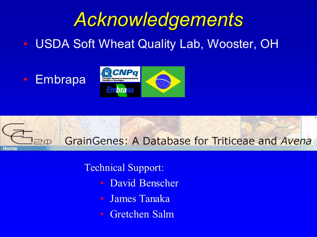 Acknowledgements USDA Soft Wheat Quality Lab, Wooster, OH Embrapa