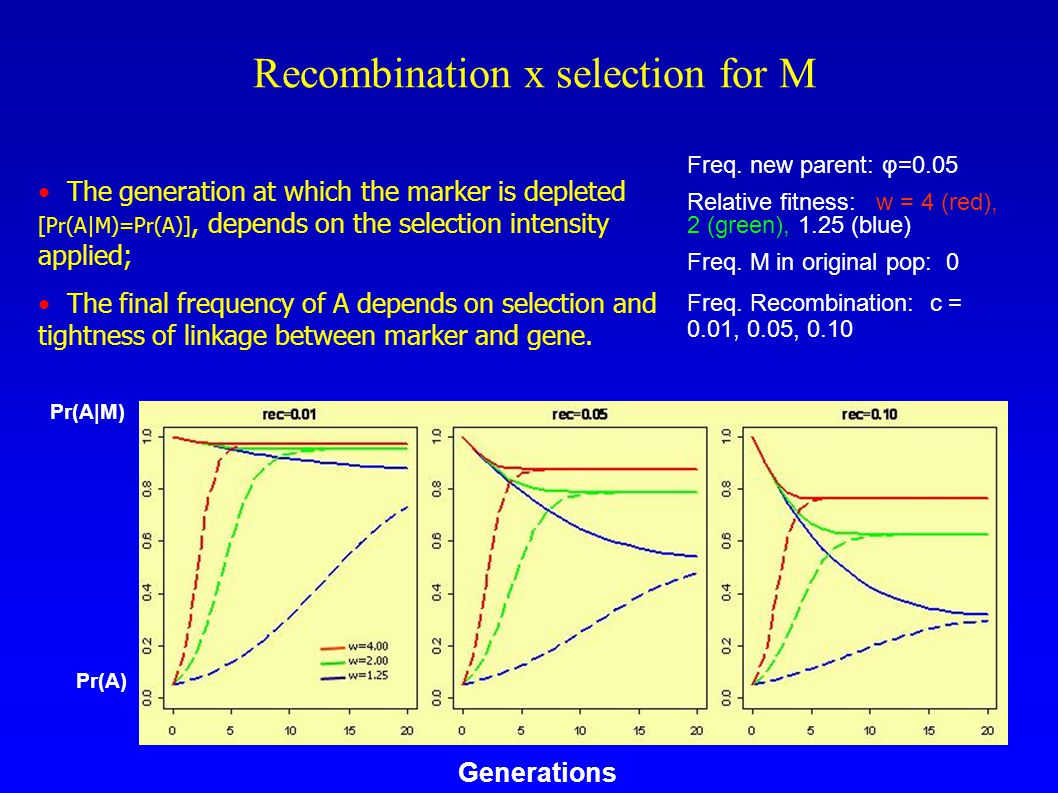 Recombination x selection for M