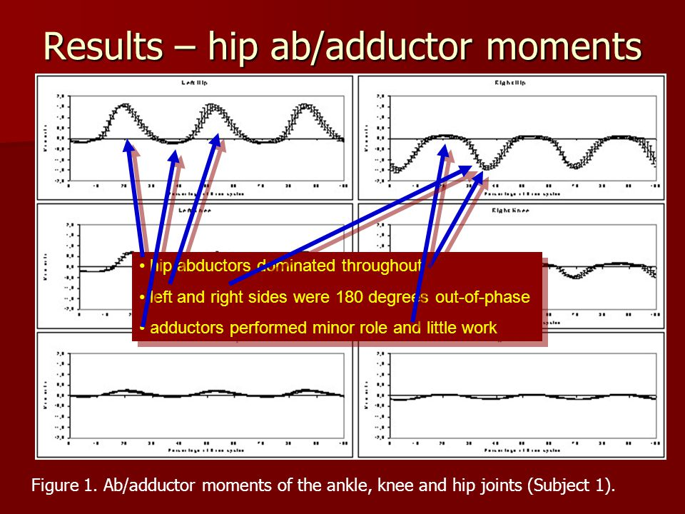 Results – hip ab/adductor moments