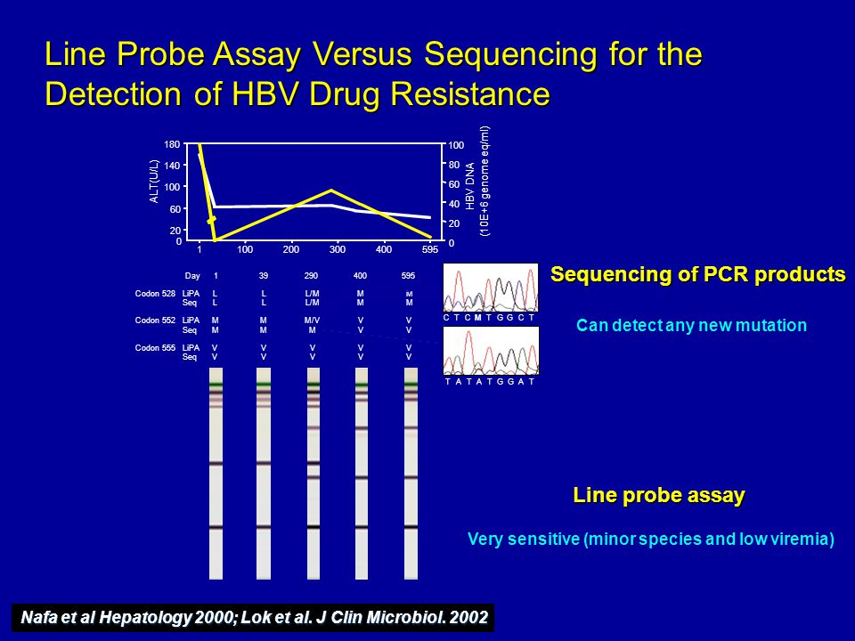 Line Probe Assay Versus Sequencing for the Detection of HBV Drug Resistance