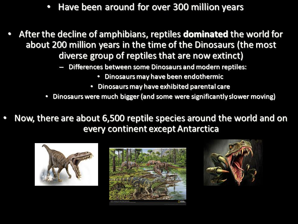 Have been around for over 300 million years