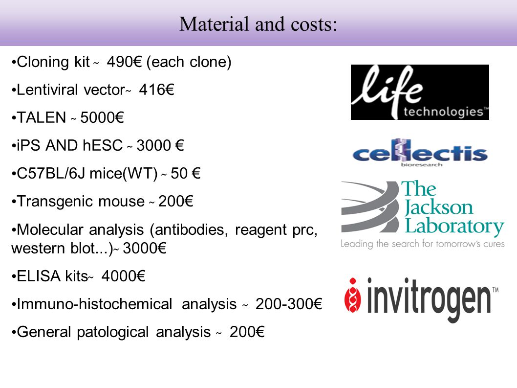 Material and costs: Cloning kit ̴̴̴ 490€ (each clone)