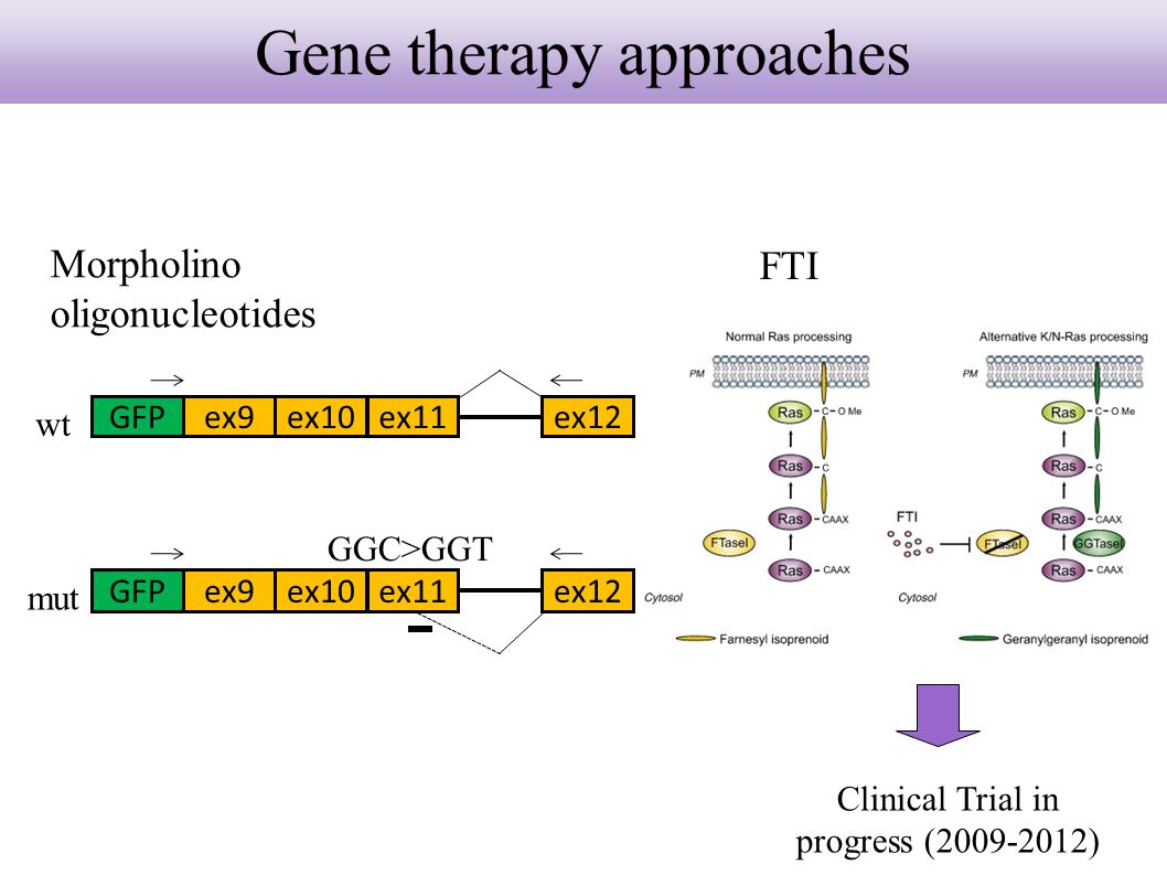 Gene therapy approaches