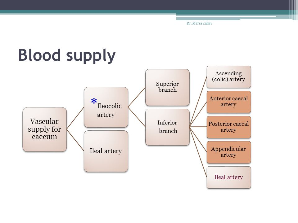 Blood supply *Ileocolic artery Vascular supply for caecum