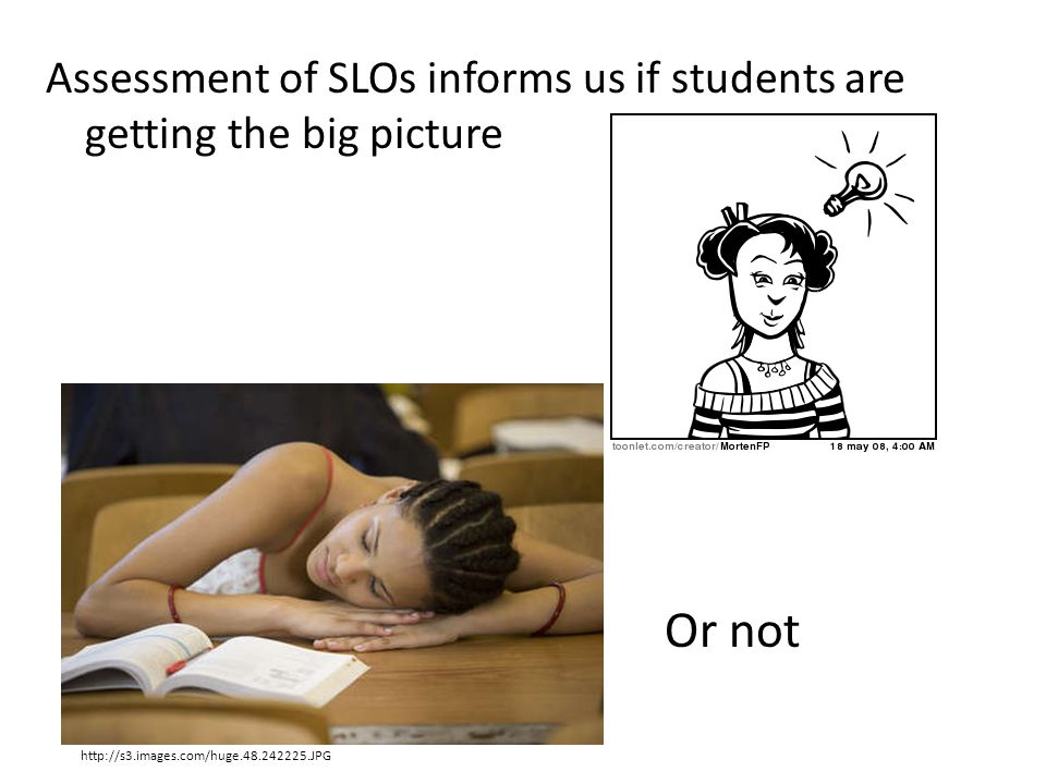 Assessment of SLOs informs us if students are getting the big picture
