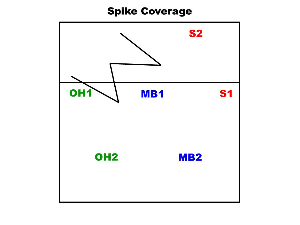 Spike Coverage S2 OH1 MB1 S1 OH2 MB2