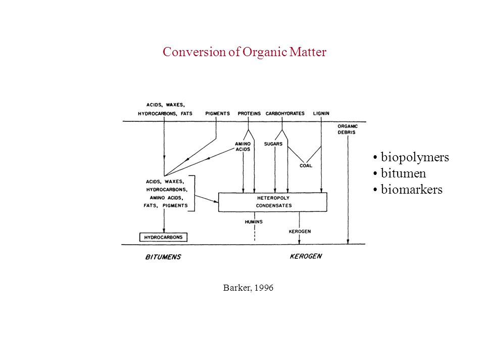 Conversion of Organic Matter