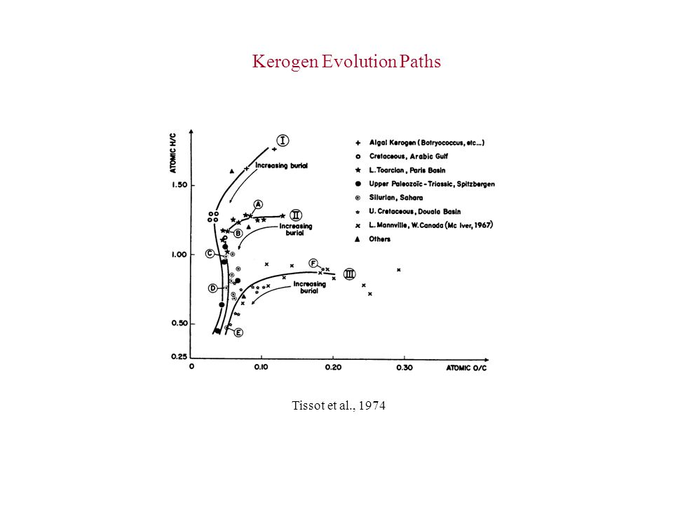 Kerogen Evolution Paths