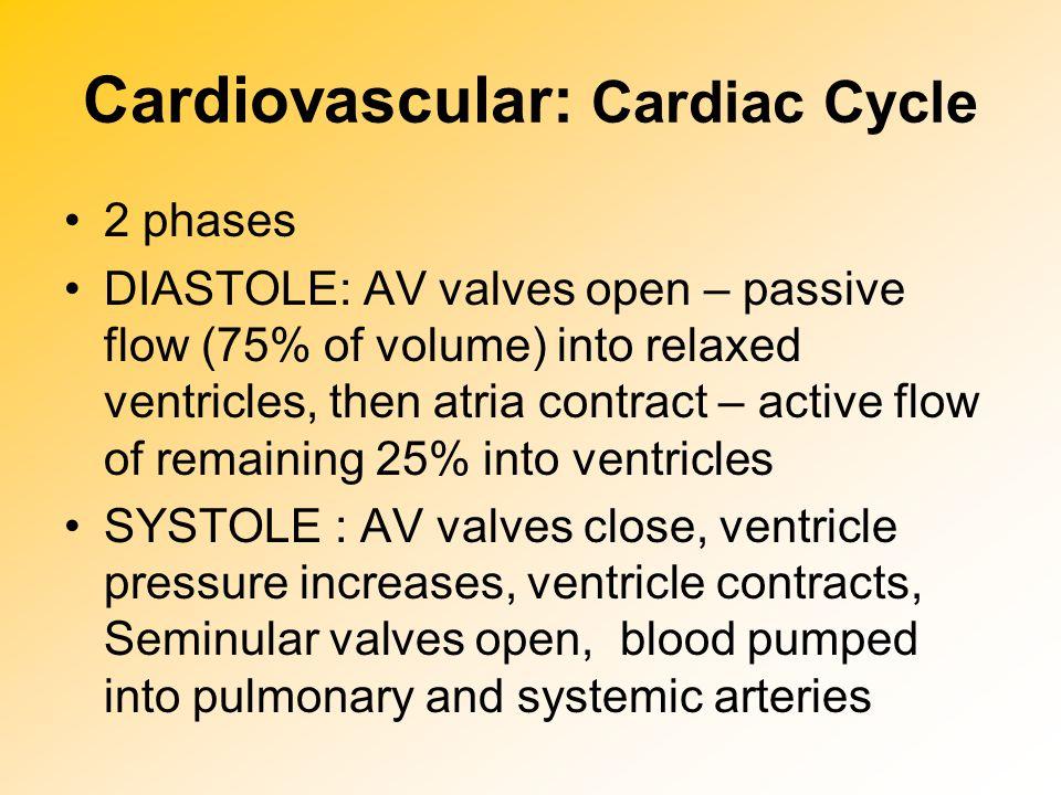 Cardiovascular: Cardiac Cycle