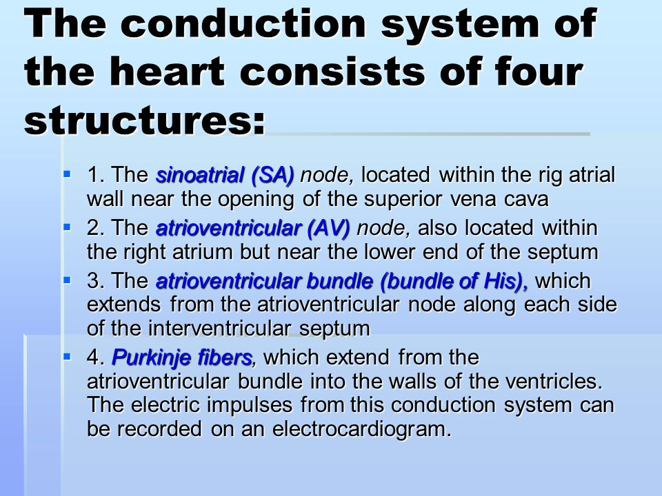 The conduction system of the heart consists of four structures: