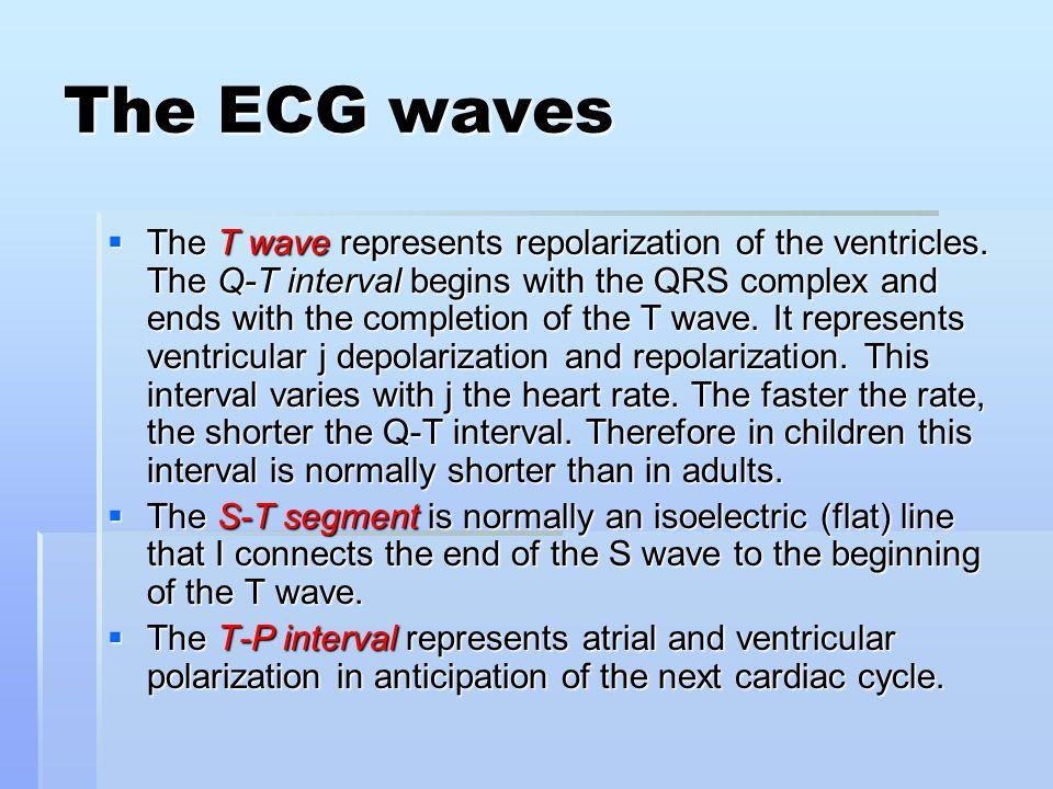 The ECG waves