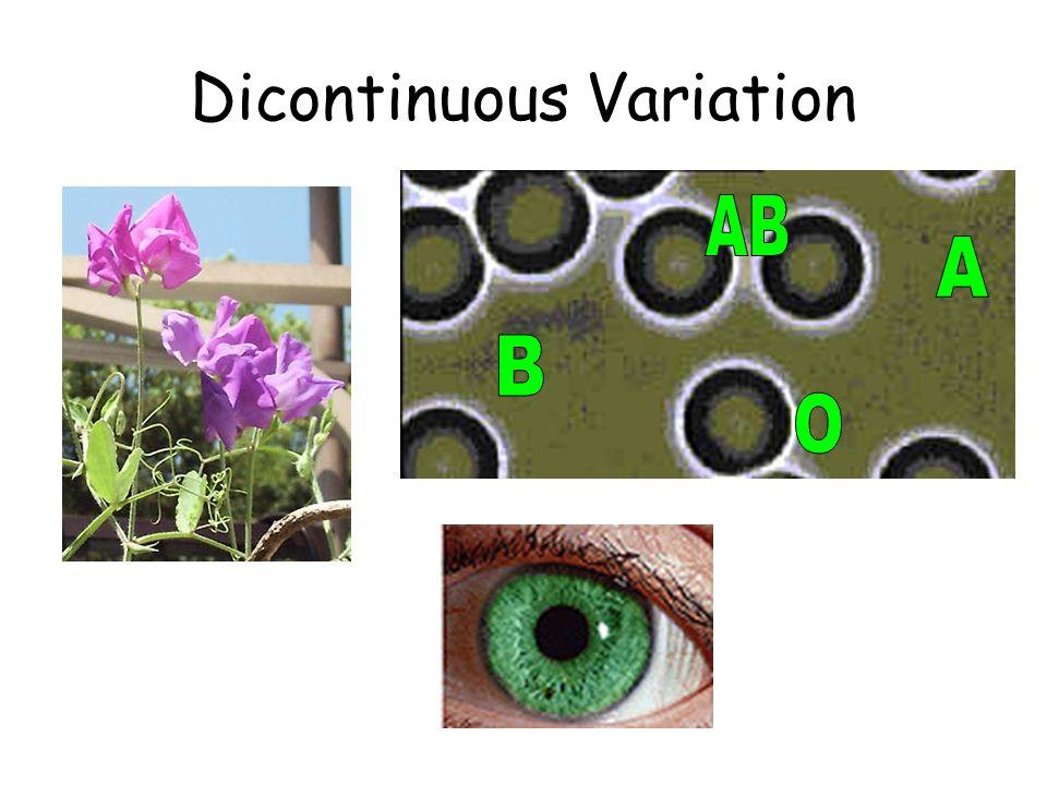 Dicontinuous Variation