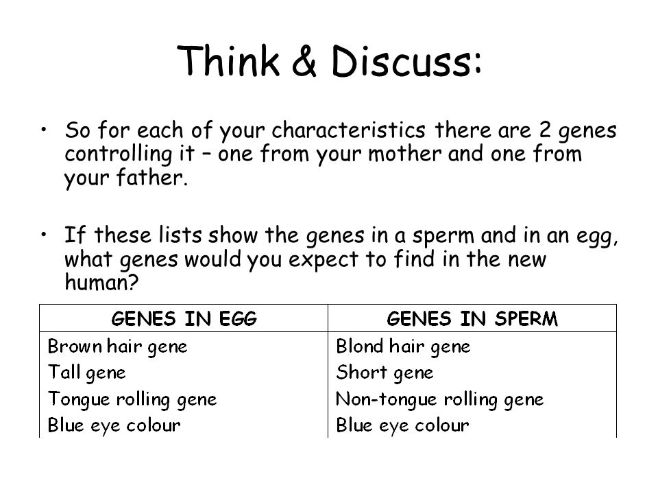 Think & Discuss: So for each of your characteristics there are 2 genes controlling it – one from your mother and one from your father.