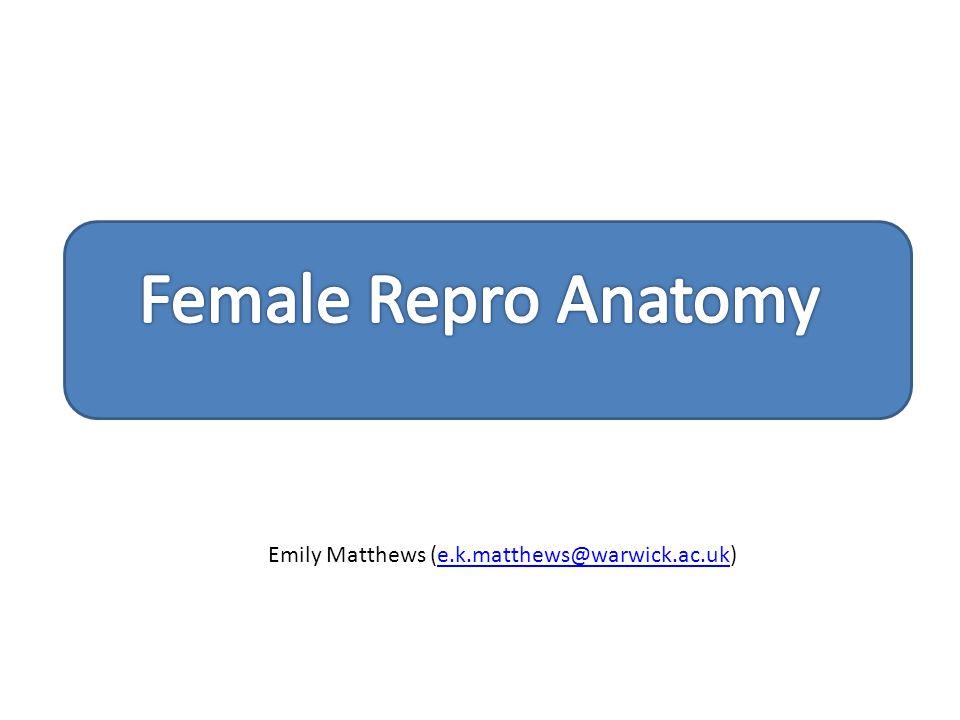 Emily Matthews (e.k.matthews@warwick.ac.uk)