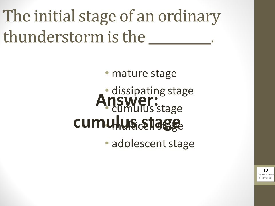 The initial stage of an ordinary thunderstorm is the __________.