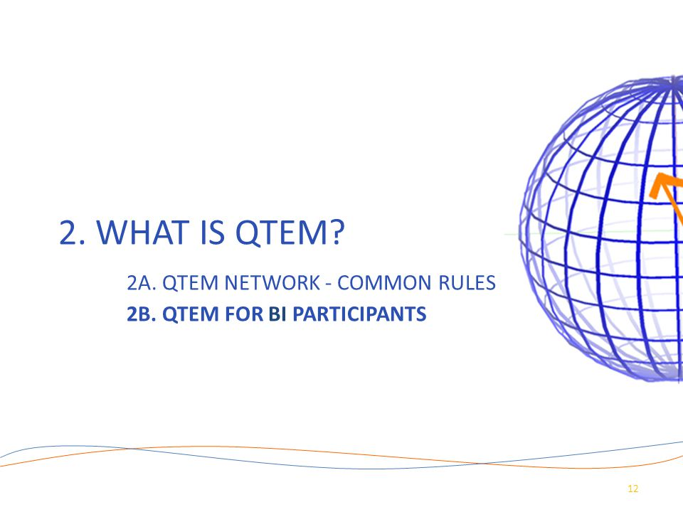 2. What is QTEM. 2A. QTEM Network - common rules. 2B