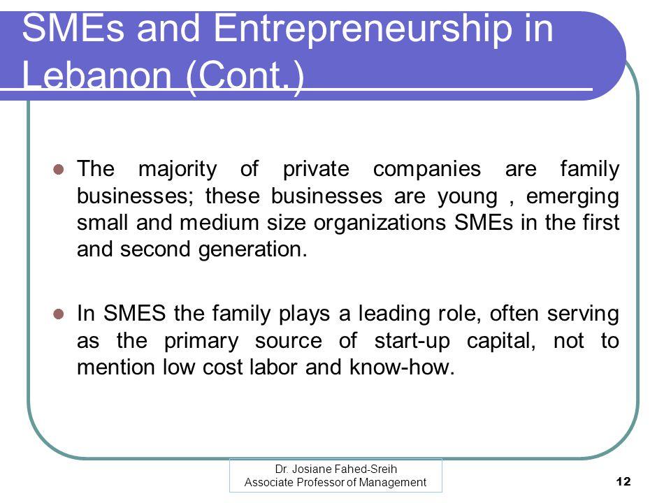SMEs and Entrepreneurship in Lebanon (Cont.)