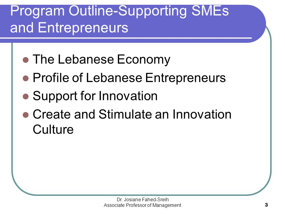 Program Outline-Supporting SMEs and Entrepreneurs