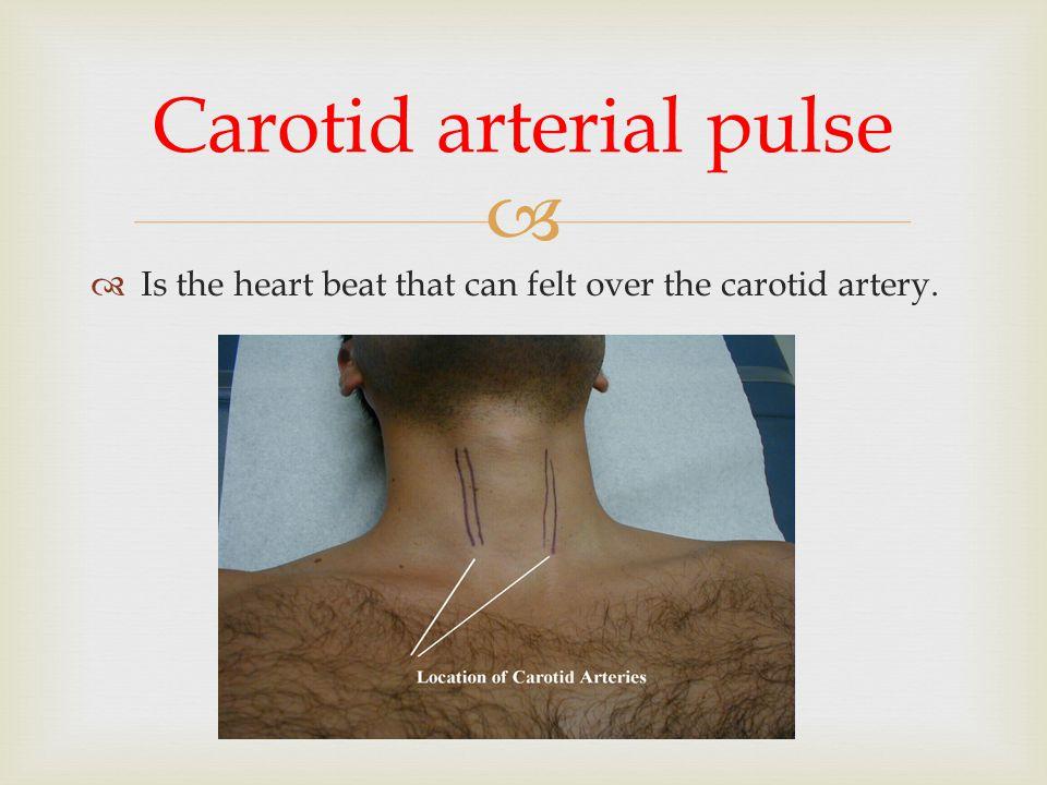 Carotid arterial pulse