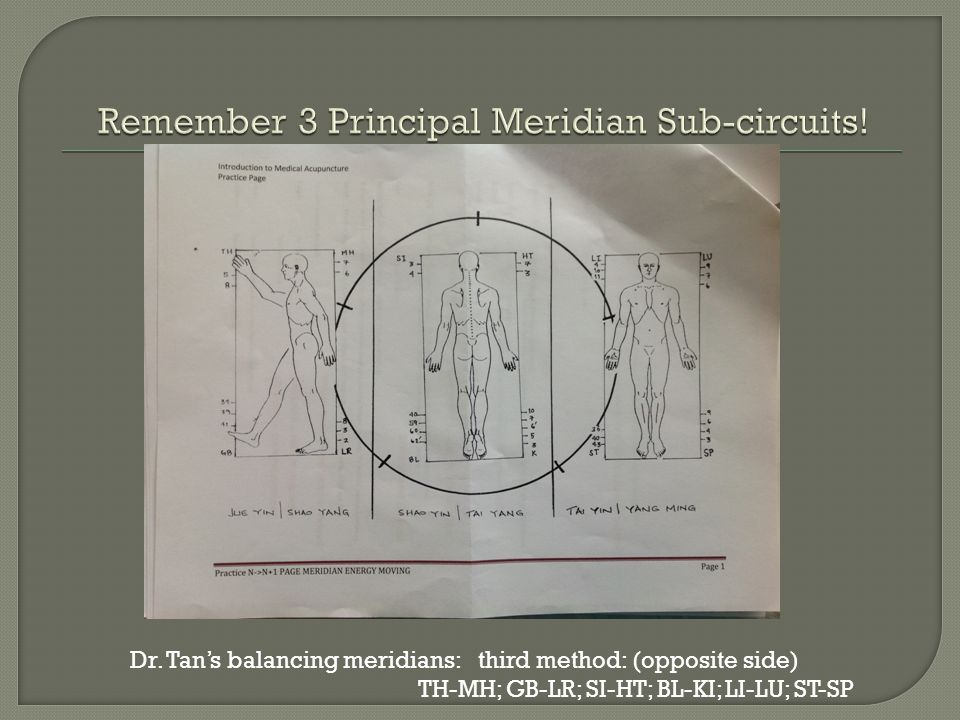 Remember 3 Principal Meridian Sub-circuits!