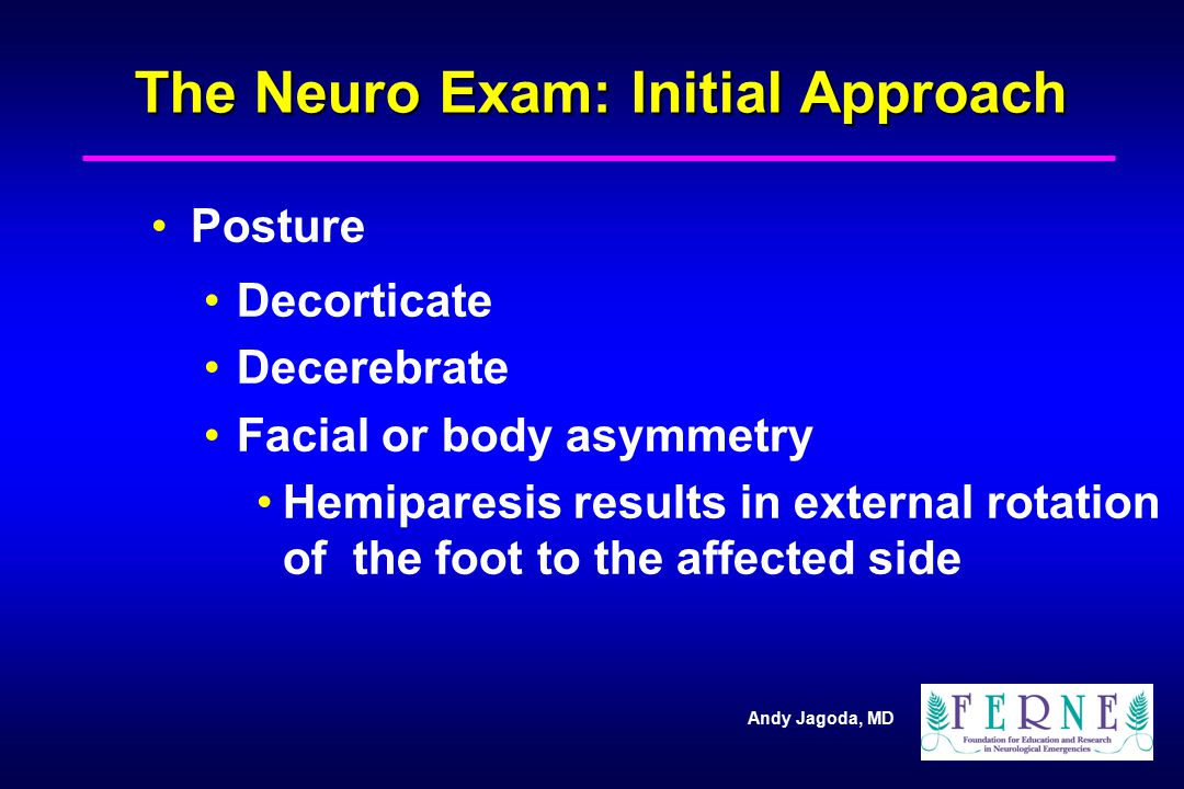 The Neuro Exam: Initial Approach
