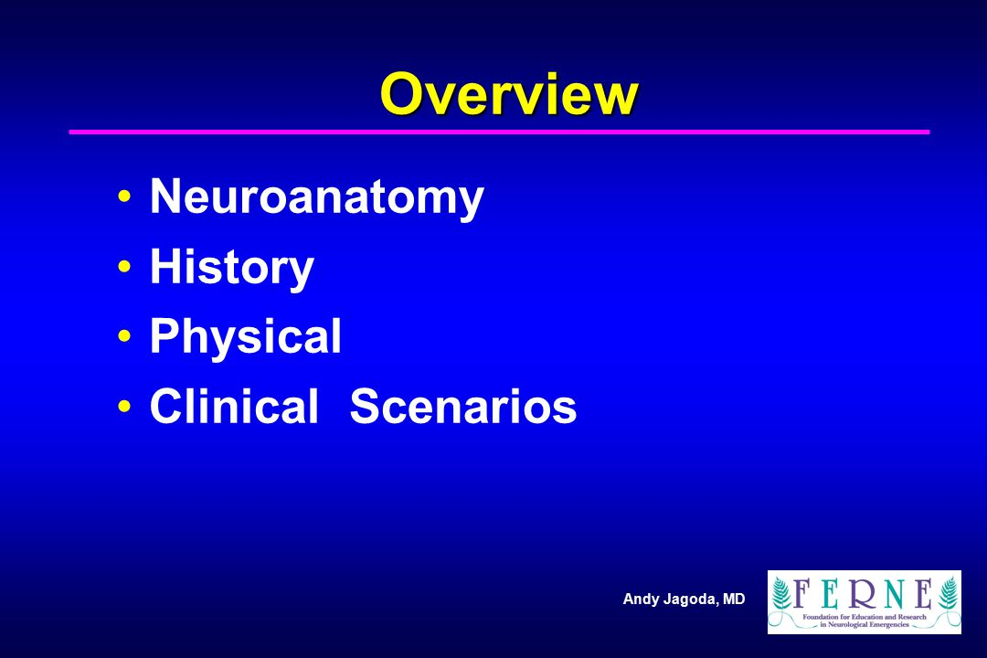 Overview Neuroanatomy History Physical Clinical Scenarios 2 2 2 2