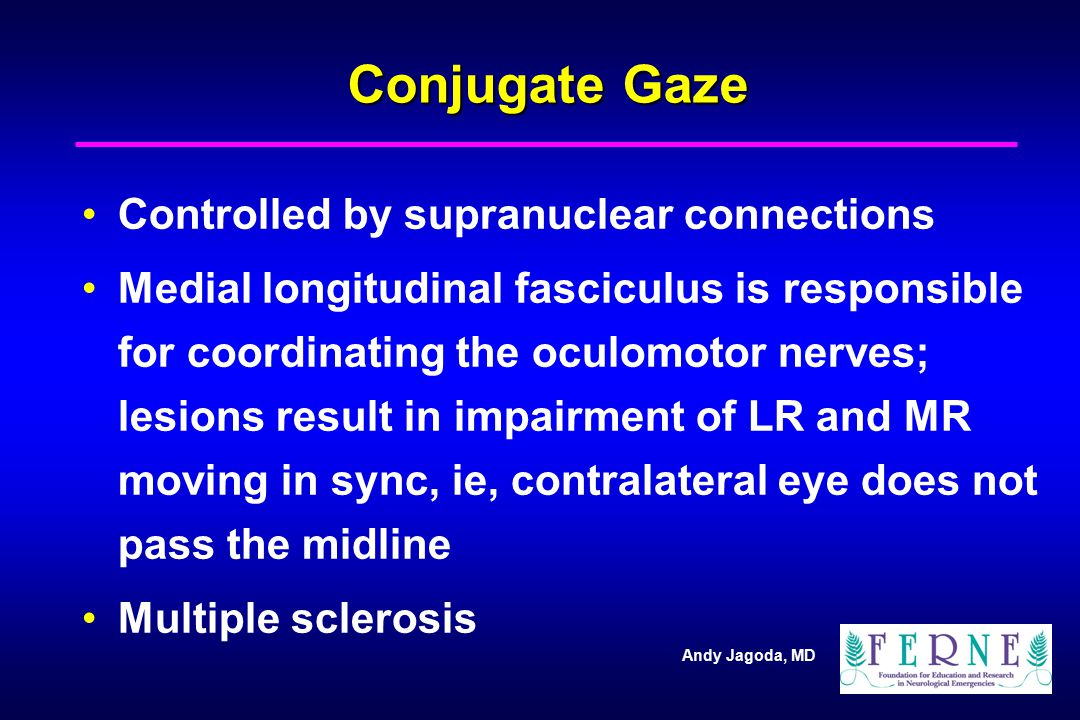Conjugate Gaze Controlled by supranuclear connections