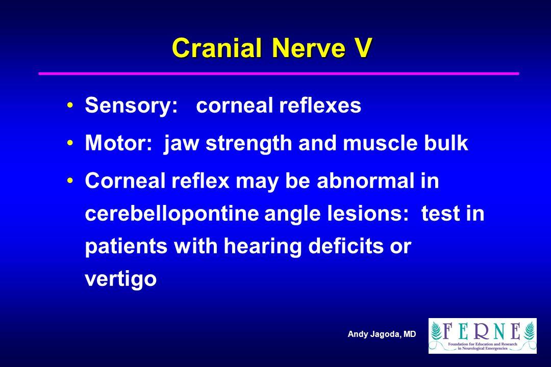Cranial Nerve V Sensory: corneal reflexes