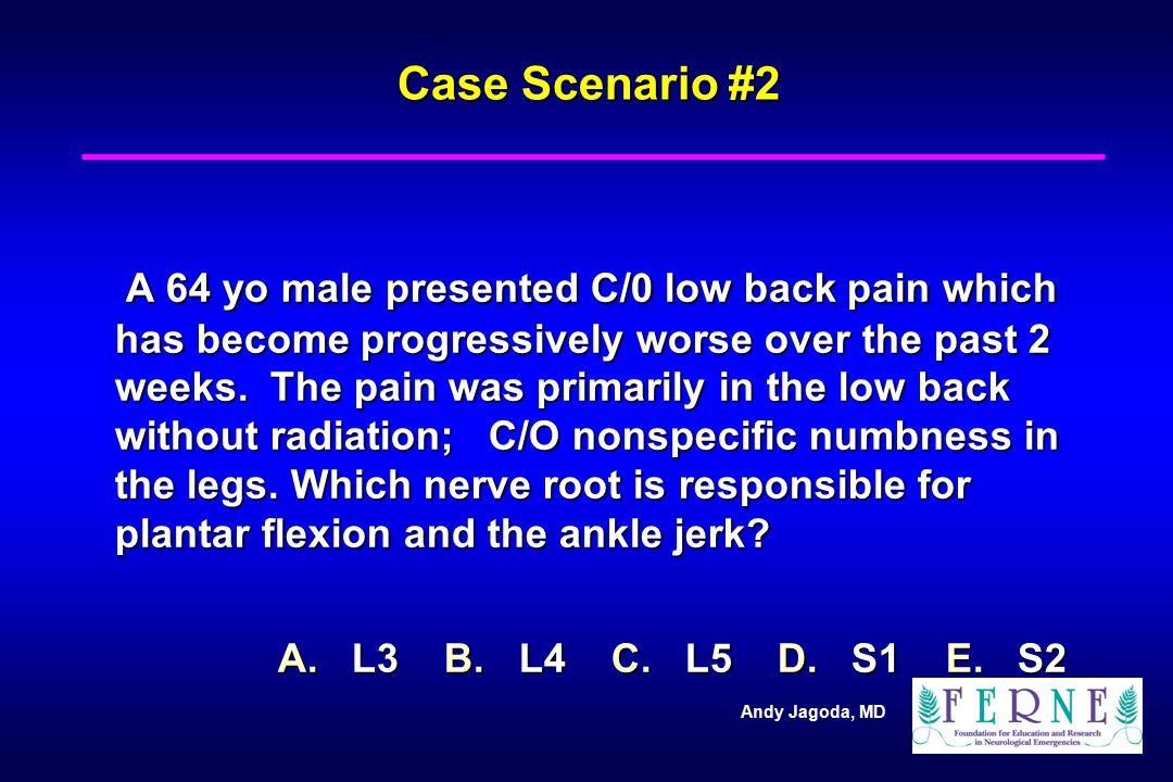 Case Scenario #2