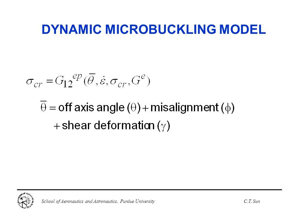 DYNAMIC MICROBUCKLING MODEL