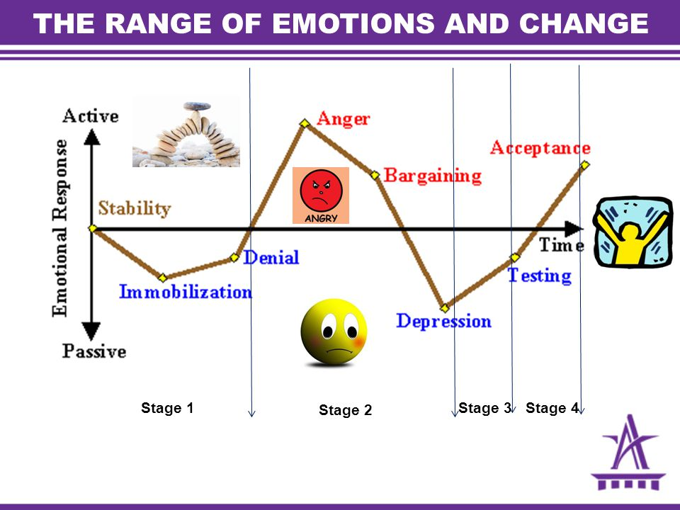 THE RANGE OF EMOTIONS AND CHANGE