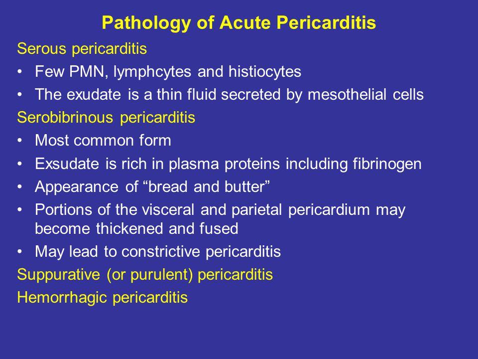 Pathology of Acute Pericarditis