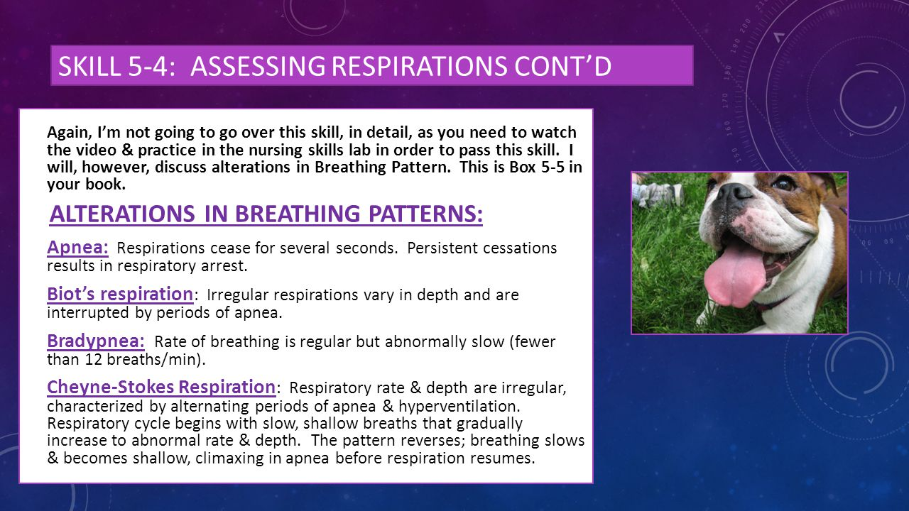 Skill 5-4: assessing respirations cont'd