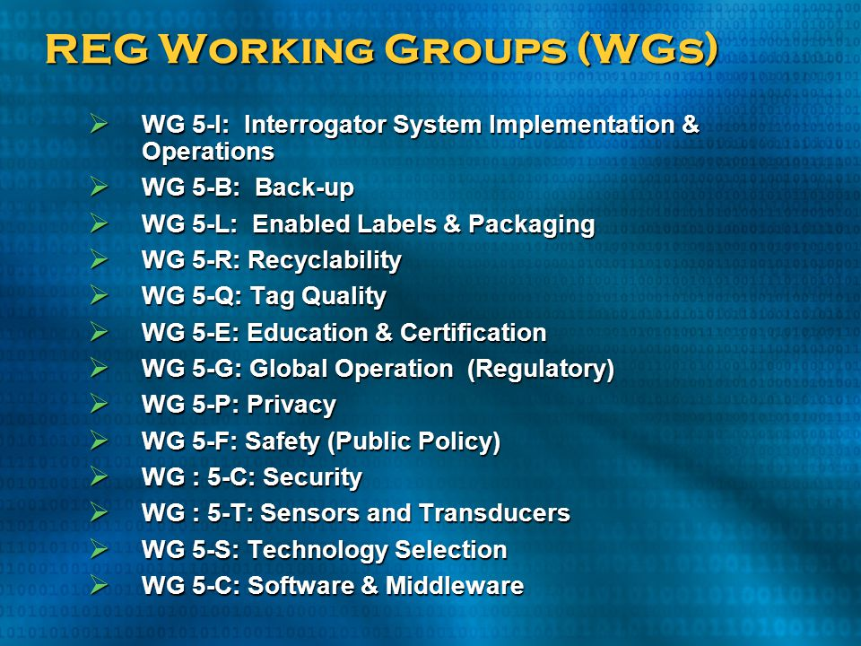REG Working Groups (WGs)