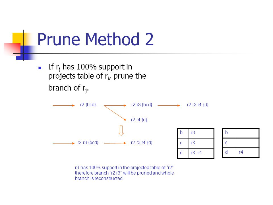 Prune Method 2 If rj has 100% support in projects table of ri, prune the branch of rj. r2 {bcd} r2 r3 {bcd}